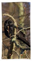 Beach Towel featuring the photograph Springtime Crow by Bill Wakeley