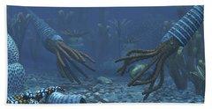 Squid-like Orthoceratites Attempt Beach Towel
