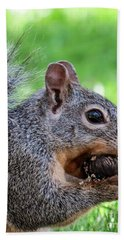 Squirrel 1 Beach Towel