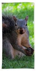 Squirrel 2 Beach Towel