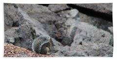 Beach Towel featuring the photograph Squirrel At Sparks Lake Do Not Make Me Jump by Marie Neder