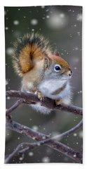 Squirrel Balancing Act Beach Sheet