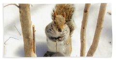 Squirrel In Snow Beach Towel