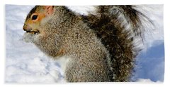 Squirrel In Winter Beach Towel