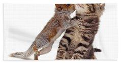 Squirrel Kiss Beach Sheet