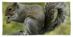 Squirrel, On The Hop Beach Sheet
