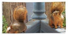 Squirrels Balancing On A Railing Beach Towel