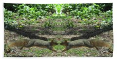 Squirrels Coming Together For A Kiss Beach Towel