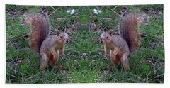 Squirrels With Question Mark Tails Beach Towel