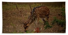 Sri Lankan Axis Deer Beach Towel