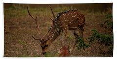 Sri Lankan Axis Deer Beach Sheet