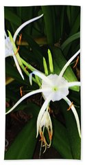 Beach Towel featuring the photograph St. A S Spider Flower Couple by Daniel Hebard