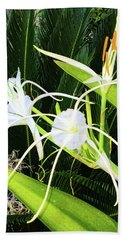 Beach Towel featuring the photograph St. Aandrews Spider Flower Family by Daniel Hebard
