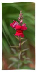 St. Johns Park Flower 872 Beach Towel