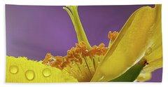 St Johns Wort Flower Beach Sheet