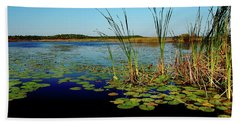 St. Mark's Lake Beach Towel