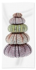 Stack Of Sea Urchins Beach Towel