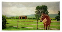 Beach Towel featuring the photograph Stallion At Fence by Diana Angstadt