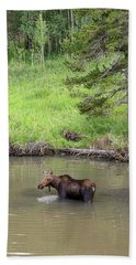 Beach Towel featuring the photograph Standing Guard by James BO Insogna