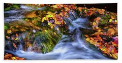 Standing In Motion - Leaves On A Rock 007 Beach Sheet by George Bostian