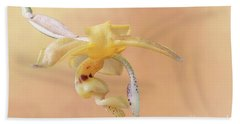 Stanhopea Orchid V2 Beach Towel