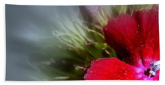Beach Sheet featuring the photograph Stardust by Elfriede Fulda