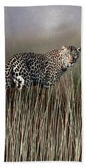 Staring Back Beach Towel by Diane Schuster