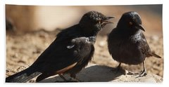 Starling Discussion. Beach Towel