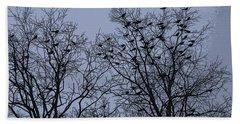 Starlings Beach Sheet