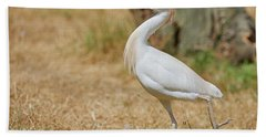 Stately Walking Cattle Egret Beach Sheet