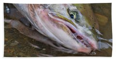 Steelhead  2 Beach Towel