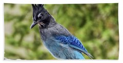 Beach Towel featuring the photograph Steller's Jay On Granite by Stephen Johnson