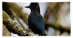 Stellers Jay Beach Towel