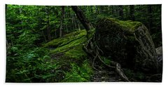 Beach Towel featuring the photograph Stevensville Brook In Underhill, Vermont - 3 by James Aiken