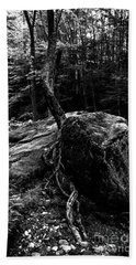 Beach Towel featuring the photograph Stevensville Brook In Underhill, Vermont - 4 Bw by James Aiken