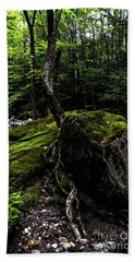 Beach Towel featuring the photograph Stevensville Brook In Underhill, Vermont - 4 by James Aiken