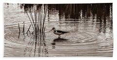 Stilt Wading At Green Cay Wetlands Boynton Beach Florida Beach Sheet