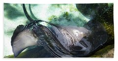 Beach Towel featuring the photograph Stingray Wave by Francesca Mackenney