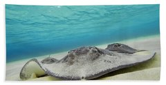 Beach Towel featuring the photograph Stingrays Under Water by Adam Romanowicz