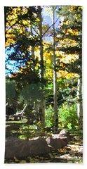 Stone Park Trails Beach Towel