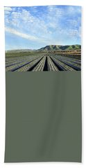 Beach Towel featuring the photograph Strawberry Fields Forever 3 by Floyd Snyder
