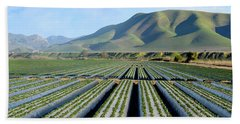 Beach Towel featuring the photograph Strawberry Fields Forever by Floyd Snyder