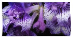 Streptocarpus 'blue Frills' Beach Towel