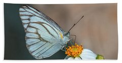 Striped Albatross Butterfly Dthn0209 Beach Sheet by Gerry Gantt