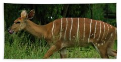 Striped Gazelle Beach Sheet