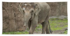Strolling Elephant Beach Towel