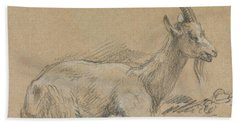 Study Of A Goat Beach Towel by Thomas Gainsborough