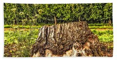 Beach Towel featuring the photograph Stumped In The Orchard by Nancy Marie Ricketts
