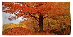 Sturdy Maple In Autumn Orange Beach Sheet