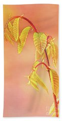 Stylized Baby Chestnut Leaves Beach Towel